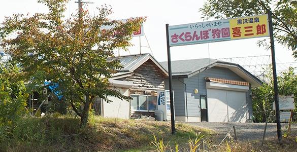 喜三郎さくらんぼ狩園
