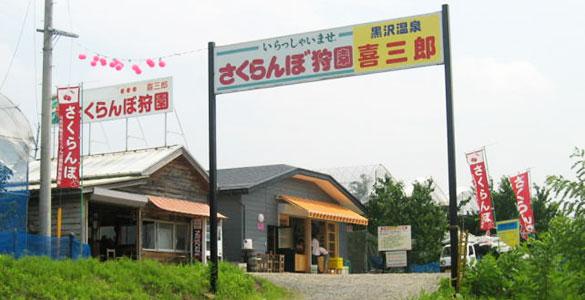 黒沢温泉喜三郎さくらんぼ狩園